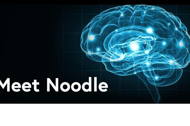 Noodle Analytics aims to help enterprises tap AI. Credit: Noodle.ai