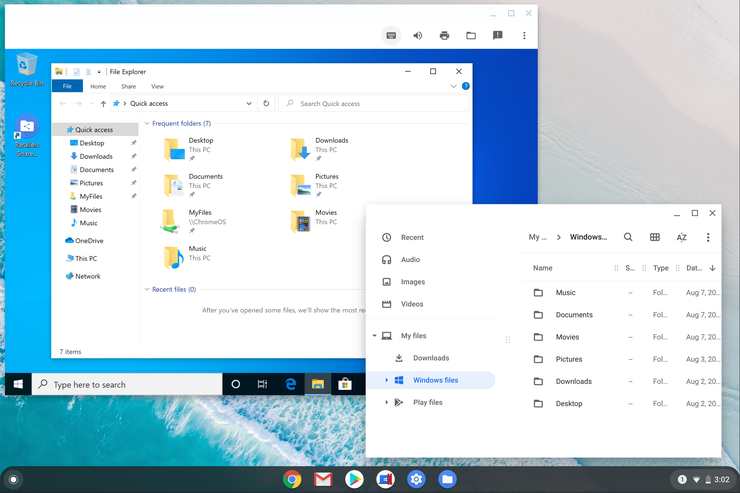 Shared folders and files in Chrome OS